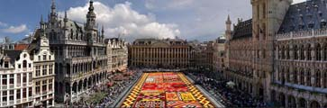 Glower Carpet, Brussels
