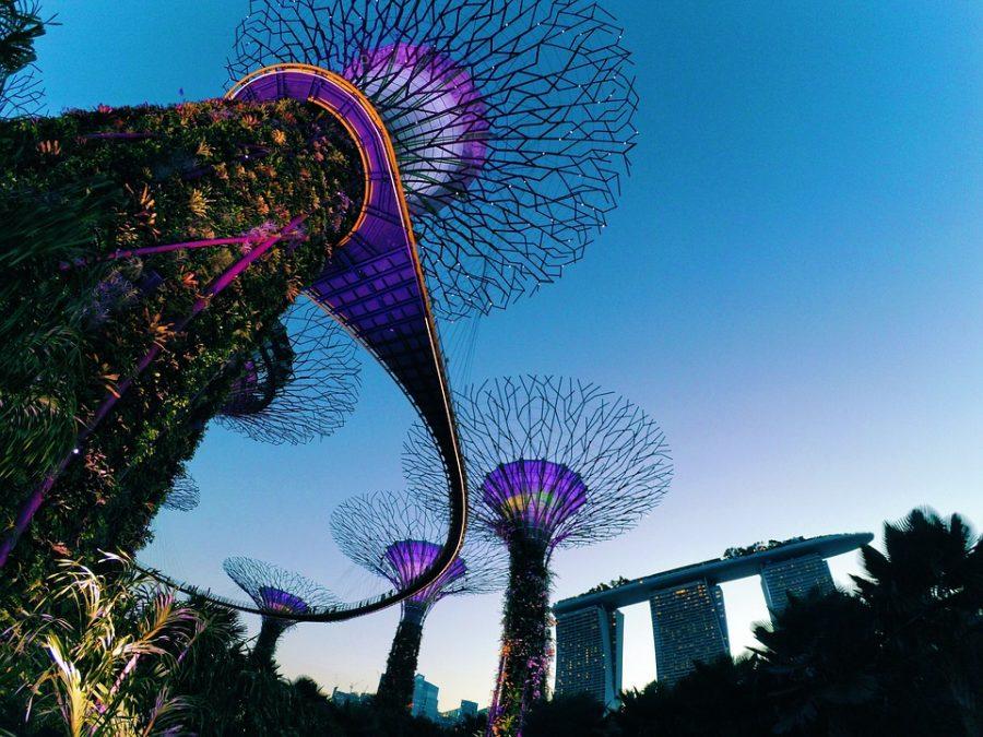 singapore dmc