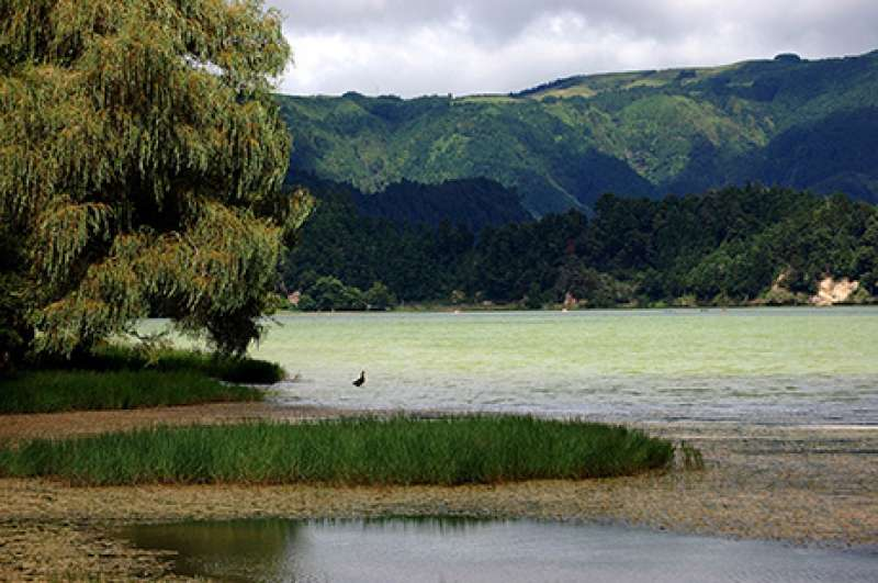 Lake - The Azores
