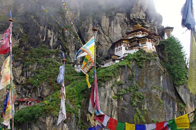 Image of DMC Bhutan