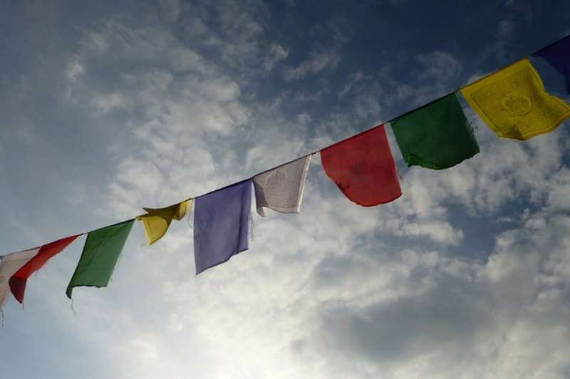 Image of DMC Nepal
